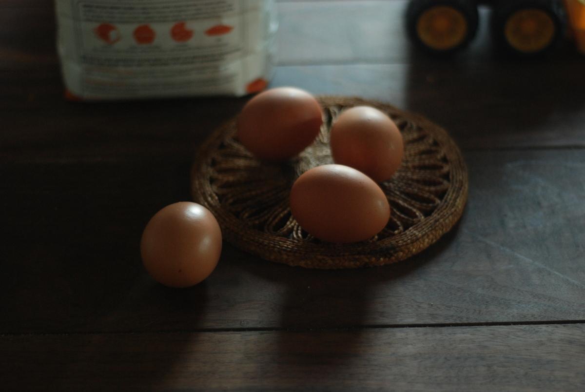 eggs, quiet