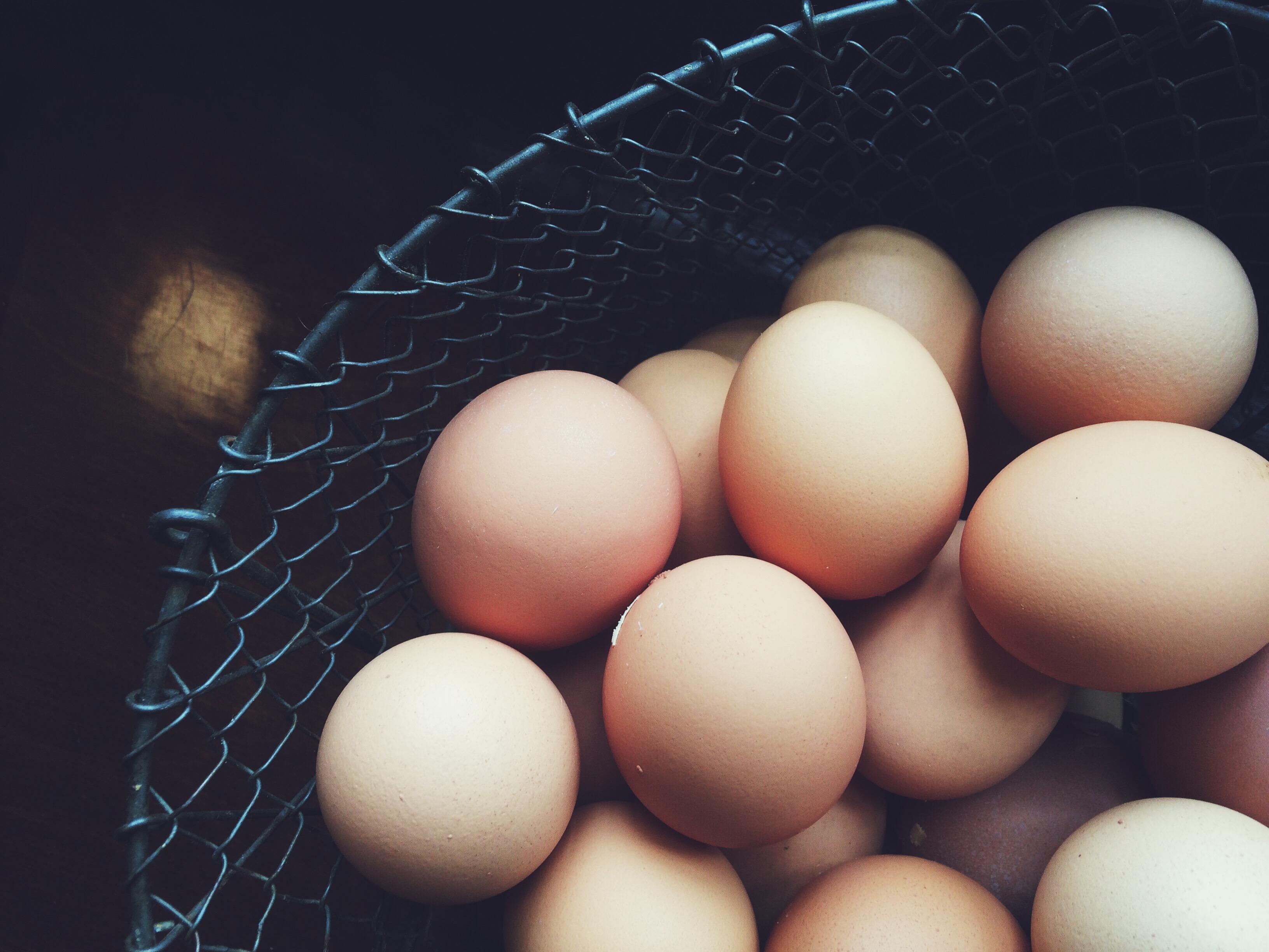 Eggs, April 2016.
